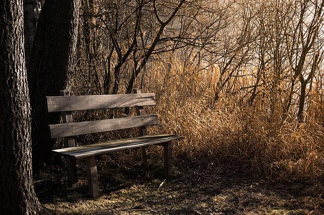 bench-1190768_640
